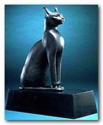 Cat5_1